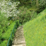 Treppe zur Sonnenterasse