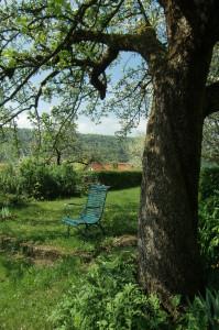 Gartenstuhl unterm Apfelbaum