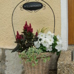 Blumen vor unserer Eingangstür