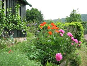 Blumen vor dem Gartenhaus