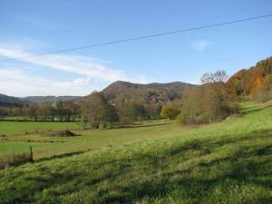 Landschaft um Eschenbach