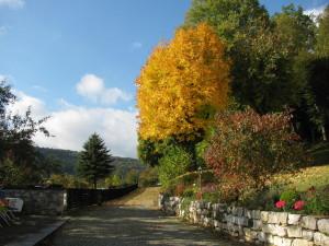 Herbst - Blick auf das Staudenbeet und Gelände