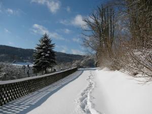 Weg in unserem Gelände im Winter
